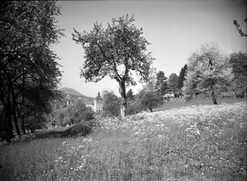 Chalet Mimi. Foto Emil Goetz, STALU FDC 45/37498